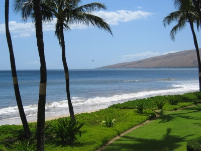 1BR oceanfront condos - Kihei Sands on Sugar Beach
