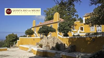 Quinta Rio de Milho
