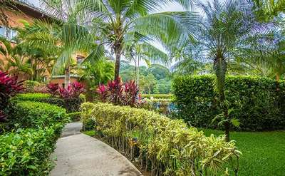 Luxury Villa Photo #13