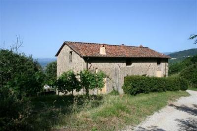 Azienda Agricola Valgiano: Lo Stecchino P.T.