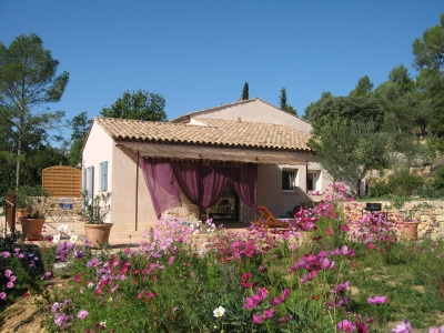Sunny house of Provence, middle of olive trees