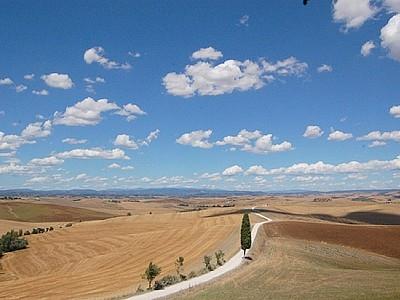 Villa in siennese clay hills-Ville di Corsano