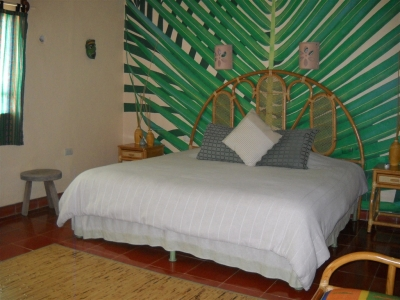 The Tree Suite or Che Na (sleeps 2)