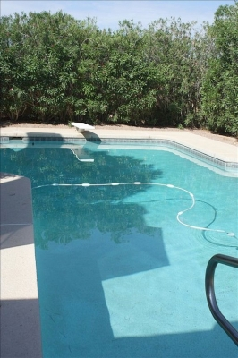 3 BR 2 BA Villa, Huge Heated Pool Nr Chabad