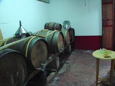 Cellar of Villa Ricardo