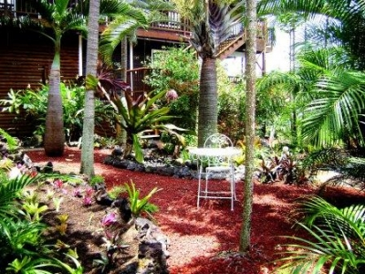 Peaceful meditation garden-tropical atmosphere
